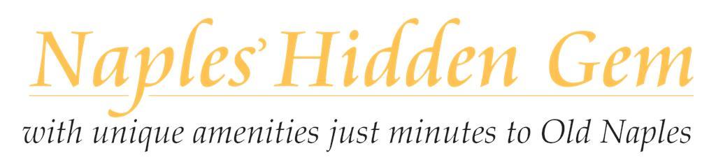 Hidden_Gem_black.PNG
